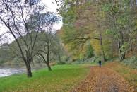 Maike im Herbstwald