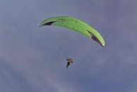 Paragliding - geil!