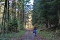 Maike im Wald.