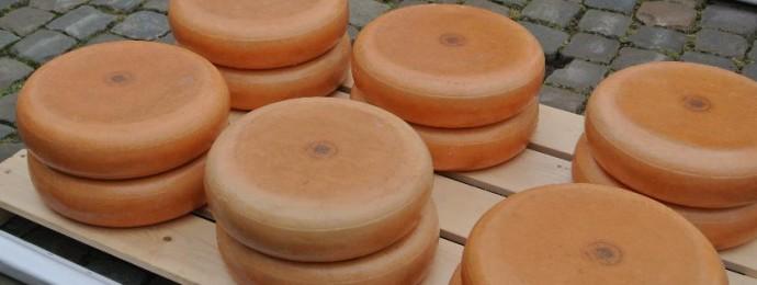 Der berühmte Käsemarkt in Gouda.