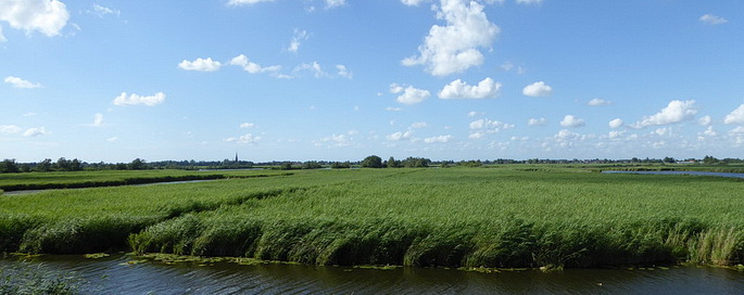 "Naturschutzgebiet ""Nieuwkoopse Plassen"""