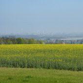 Blick in die Rhein-Ebene nach Wesseling.
