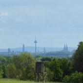 Schöner Blick auf Köln.