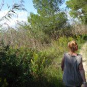 Rückweg am Rande des Naturschutzgebietes Albufera.