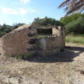Durchs Campo nach Port d'Alcúdia.