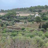 """Das Weingut """"Castell Miquel"""" - da hab ich mal Tim Mälzer fotografiert."""